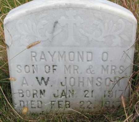 JOHNSON, RAYMOND O. - Knox County, Nebraska   RAYMOND O. JOHNSON - Nebraska Gravestone Photos