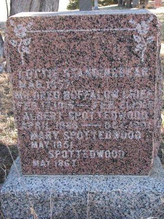 SPOTTEDWOOD, MARY - Knox County, Nebraska   MARY SPOTTEDWOOD - Nebraska Gravestone Photos