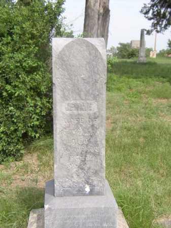 VAN BUREN, JENNIE - Knox County, Nebraska | JENNIE VAN BUREN - Nebraska Gravestone Photos