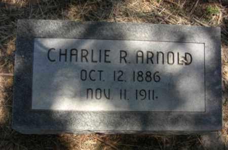 ARNOLD, CHARLIE R. - Nance County, Nebraska   CHARLIE R. ARNOLD - Nebraska Gravestone Photos