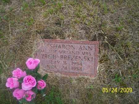 BREZENSKI, SHARON ANN - Nance County, Nebraska   SHARON ANN BREZENSKI - Nebraska Gravestone Photos