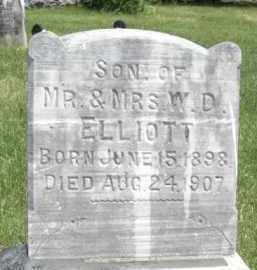 ELLIOTT, HARRY - Nance County, Nebraska | HARRY ELLIOTT - Nebraska Gravestone Photos