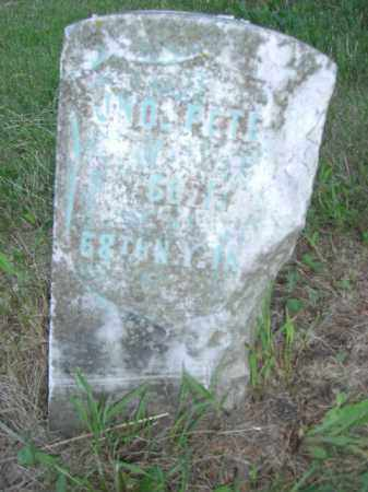 PETERS, JOHN - Nance County, Nebraska | JOHN PETERS - Nebraska Gravestone Photos