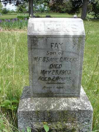 WEEKS, FAY - Nance County, Nebraska | FAY WEEKS - Nebraska Gravestone Photos