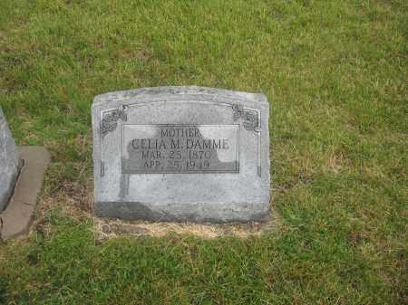 DAMME, CELIA - Otoe County, Nebraska | CELIA DAMME - Nebraska Gravestone Photos
