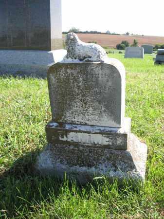DAMME, PAUL HEINRICH - Otoe County, Nebraska | PAUL HEINRICH DAMME - Nebraska Gravestone Photos