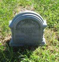DAMME, WILHELMINA CHARLOTTE - Otoe County, Nebraska | WILHELMINA CHARLOTTE DAMME - Nebraska Gravestone Photos