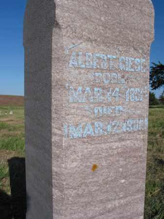 GIESE, ALBERT (CLOSE UP) - Pierce County, Nebraska | ALBERT (CLOSE UP) GIESE - Nebraska Gravestone Photos