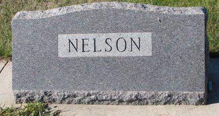 NELSON, *FAMILY MONUMENT - Pierce County, Nebraska | *FAMILY MONUMENT NELSON - Nebraska Gravestone Photos