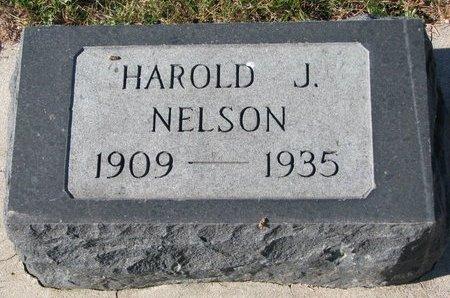 NELSON, HAROLD J. - Pierce County, Nebraska | HAROLD J. NELSON - Nebraska Gravestone Photos