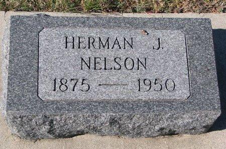 NELSON, HERMAN J. - Pierce County, Nebraska   HERMAN J. NELSON - Nebraska Gravestone Photos