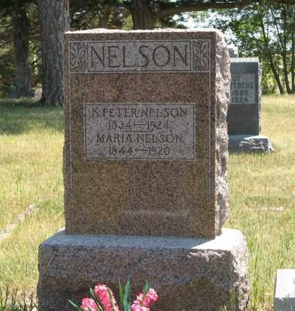 NELSON, K. PETER - Pierce County, Nebraska | K. PETER NELSON - Nebraska Gravestone Photos