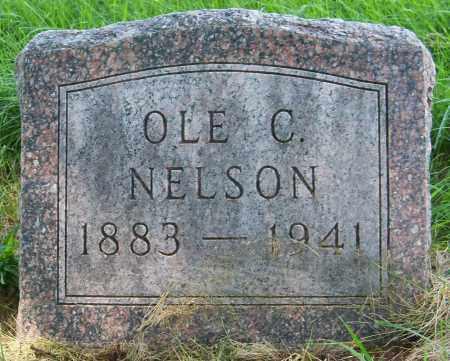NELSON, OLE C - Pierce County, Nebraska | OLE C NELSON - Nebraska Gravestone Photos