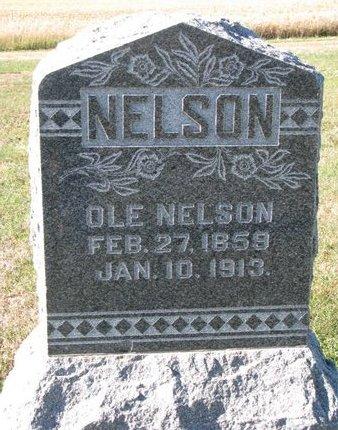 NELSON, OLE - Pierce County, Nebraska   OLE NELSON - Nebraska Gravestone Photos
