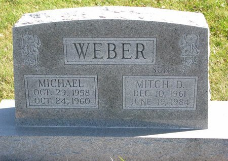 WEBER, MICHAEL - Pierce County, Nebraska | MICHAEL WEBER - Nebraska Gravestone Photos