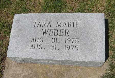 WEBER, TARA MARIE - Pierce County, Nebraska | TARA MARIE WEBER - Nebraska Gravestone Photos