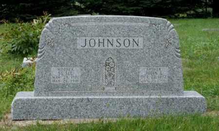 JOHNSON, SUSIE - Platte County, Nebraska | SUSIE JOHNSON - Nebraska Gravestone Photos