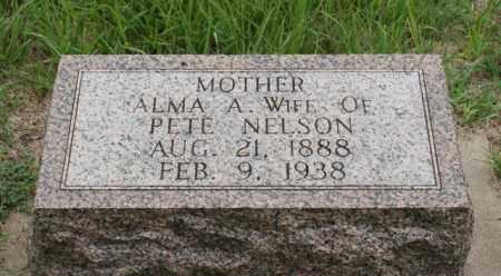 NELSON, ALMA A. - Platte County, Nebraska | ALMA A. NELSON - Nebraska Gravestone Photos