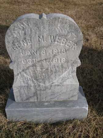 WEBER, GENE - Platte County, Nebraska | GENE WEBER - Nebraska Gravestone Photos