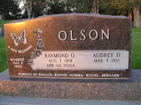 OLSON, AUDREY D. - Rock County, Nebraska | AUDREY D. OLSON - Nebraska Gravestone Photos