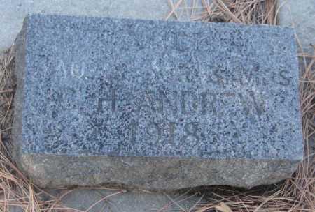 ANDREW, ALICE - Saline County, Nebraska   ALICE ANDREW - Nebraska Gravestone Photos