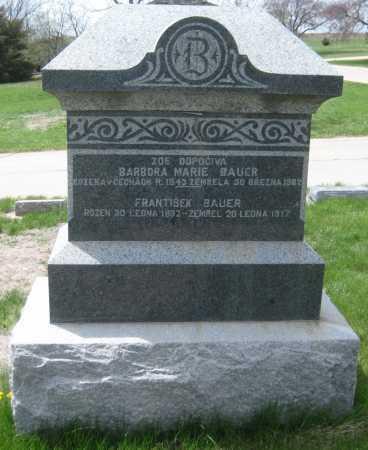 BAUER, BARBORA MARIE - Saline County, Nebraska | BARBORA MARIE BAUER - Nebraska Gravestone Photos