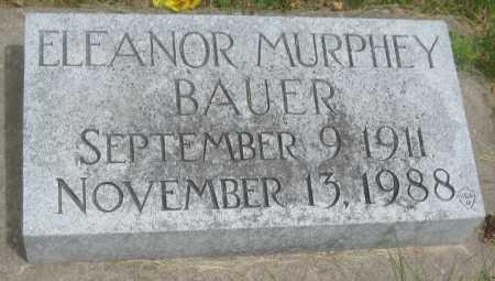 BAUER, ELEANOR - Saline County, Nebraska | ELEANOR BAUER - Nebraska Gravestone Photos
