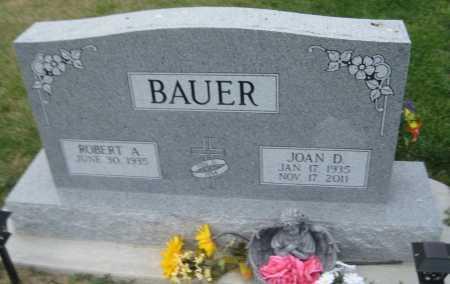 BAUER, ROBERT A. - Saline County, Nebraska   ROBERT A. BAUER - Nebraska Gravestone Photos