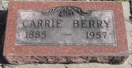 BERRY, CARRIE - Saline County, Nebraska | CARRIE BERRY - Nebraska Gravestone Photos
