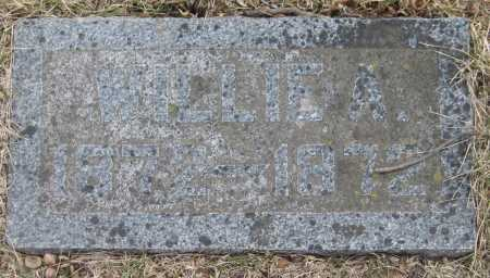 BUCHTEL, WILLIE A. - Saline County, Nebraska | WILLIE A. BUCHTEL - Nebraska Gravestone Photos
