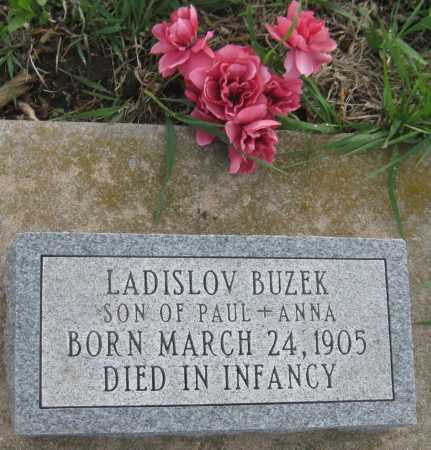 BUZEK, LADISLOV - Saline County, Nebraska | LADISLOV BUZEK - Nebraska Gravestone Photos