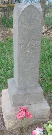 BUZEK, PAVEL - Saline County, Nebraska | PAVEL BUZEK - Nebraska Gravestone Photos