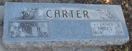 CARTER, JAMES C. - Saline County, Nebraska | JAMES C. CARTER - Nebraska Gravestone Photos