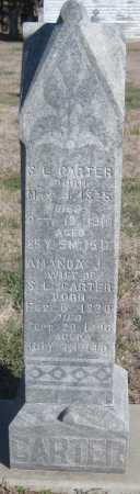 CARTER, S. L. - Saline County, Nebraska | S. L. CARTER - Nebraska Gravestone Photos