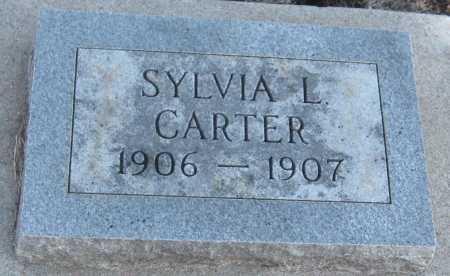 CARTER, SYLVIA L. - Saline County, Nebraska | SYLVIA L. CARTER - Nebraska Gravestone Photos