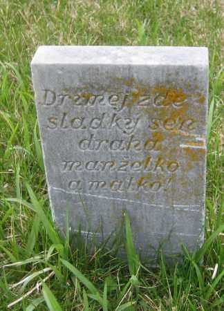 "CHAB, JOHANN ""JAN"" - Saline County, Nebraska   JOHANN ""JAN"" CHAB - Nebraska Gravestone Photos"