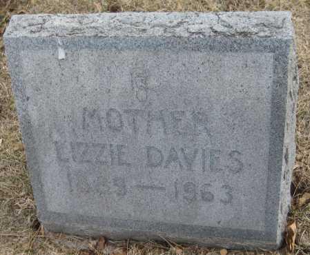 DAVIES, LIZZIE - Saline County, Nebraska | LIZZIE DAVIES - Nebraska Gravestone Photos