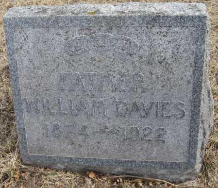 DAVIES, WILLIAM - Saline County, Nebraska | WILLIAM DAVIES - Nebraska Gravestone Photos