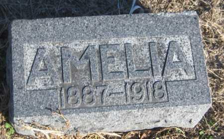 DEINES, AMELIA - Saline County, Nebraska | AMELIA DEINES - Nebraska Gravestone Photos