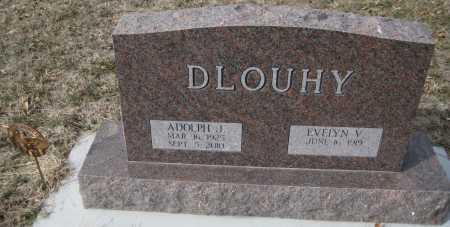 DOUHY, EVELYN V. - Saline County, Nebraska | EVELYN V. DOUHY - Nebraska Gravestone Photos