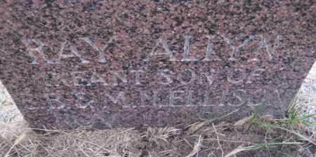 ELLISON, RAY ALLYN - Saline County, Nebraska   RAY ALLYN ELLISON - Nebraska Gravestone Photos