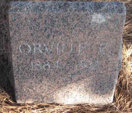 ELLSWORTH, ORVILLE E. - Saline County, Nebraska   ORVILLE E. ELLSWORTH - Nebraska Gravestone Photos