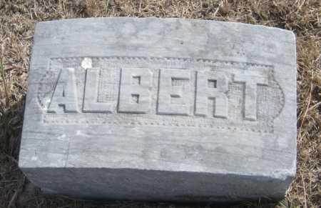 EVANS, ALBERT - Saline County, Nebraska | ALBERT EVANS - Nebraska Gravestone Photos