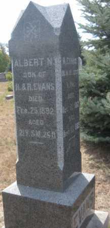 EVANS, ALBERT N. - Saline County, Nebraska   ALBERT N. EVANS - Nebraska Gravestone Photos