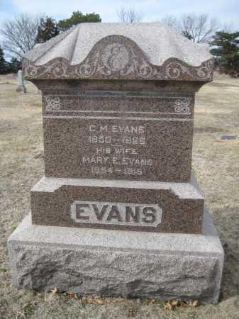 EVANS, MARY E. - Saline County, Nebraska   MARY E. EVANS - Nebraska Gravestone Photos