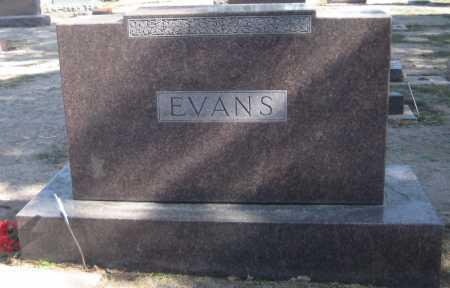 EVANS, FAMILY MONUMENT - Saline County, Nebraska | FAMILY MONUMENT EVANS - Nebraska Gravestone Photos