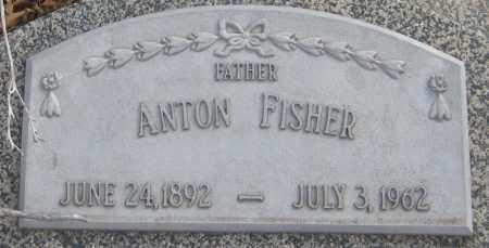 FISHER, ANTON - Saline County, Nebraska | ANTON FISHER - Nebraska Gravestone Photos