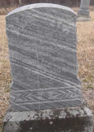 HEINZMAN, MARK ALBERT - Saline County, Nebraska | MARK ALBERT HEINZMAN - Nebraska Gravestone Photos