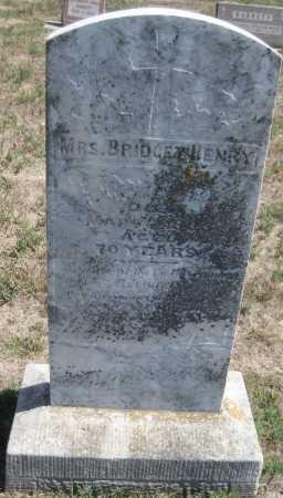 HENRY, BRIDGET - Saline County, Nebraska | BRIDGET HENRY - Nebraska Gravestone Photos