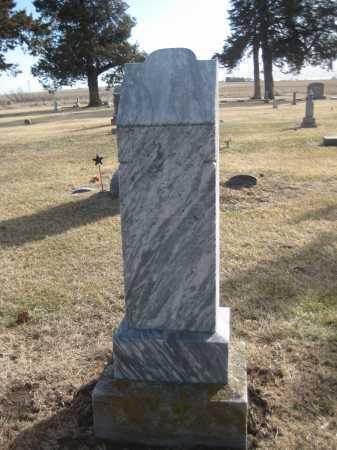 HENRY, CHILDREN - Saline County, Nebraska | CHILDREN HENRY - Nebraska Gravestone Photos